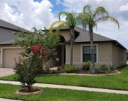 11560 Crestridge Loop, Trinity image