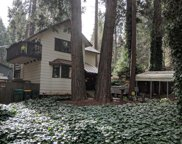 2785  LOYAL, Pollock Pines image