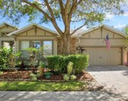 15737 Starling Water Drive, Lithia image