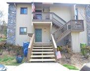 201 Birch Forest  Lane Unit #201, Asheville image