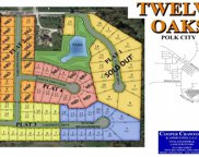 1354 Twelve Oaks Drive, Polk City image
