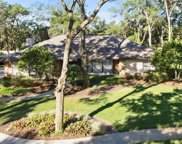 2913 Chelsea Woods Drive, Valrico image