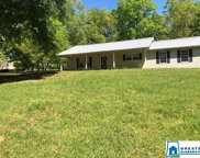 4051 Mountain View Rd, Odenville image
