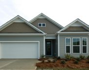 60 Sifted Grain Road, Bluffton image