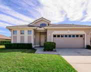 3951 Silk Oak Lane, Palm Harbor image