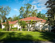14701 SW Sonora Terrace, Indiantown image