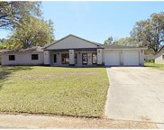 321 Hollowtree Drive, Seffner image