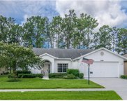 9500 Conservation Drive, New Port Richey image