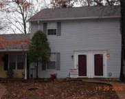 224 Hickory Forge Dr, Antioch image