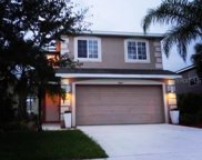 7034 Montauk Point Crossing, Bradenton image