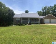 3712 Mays Bend Rd, Pell City image