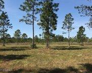 8643 Hammocks Cove Trail Ne, Leland image