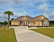 1117 Glossy Ibis Dr, Conway image