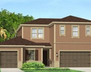 17920 Woodland View Drive, Lutz image