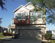 11125 Running Pine Drive, Riverview image
