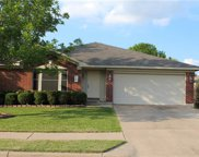 1300 Canna Lily Ln, Pflugerville image