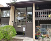 6181 Knoll Wood Road Unit 103, Willowbrook image