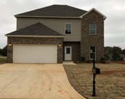 5071 Meadow Lake Crest, Mccalla image