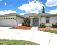 1009 Calle Rosa Place, Ruskin image