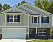 705 Rose Mallow Drive, Zebulon image