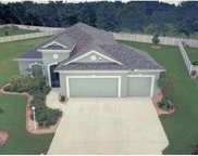 3009 44th Court E, Palmetto image