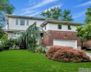 18 Theodore Dr, Plainview image