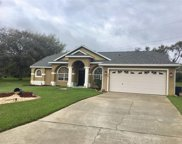 394 Hickory Springs Place, Debary image