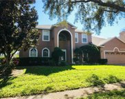 8600 Terrace Pines Court, Orlando image