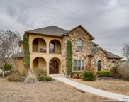 10403 Willow Bark, Boerne image