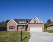 6558 Bellawood Drive, Trinity image