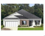 1218 White Fox Court, Conway image