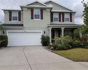 2603 Stardale Way, Lutz image