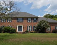 224 The Hollows Ct, Hendersonville image