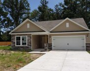 99 Costa Ct., Pawleys Island image