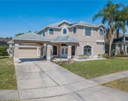 14019 Cherry Bush Court, Orlando image