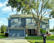217 Pleasant Hill Drive, Clermont image