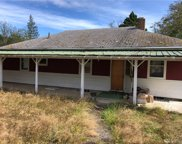 1280 Doswallips Rd, Brinnon image