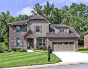 12459 Cotton Blossom Lane, Knoxville image