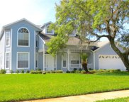 6222 Courtney Cove, Apopka image