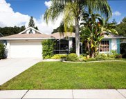 3472 Silver Meadow Way, Plant City image