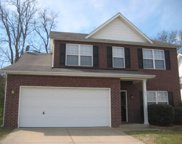 127 Coldwater Drive, Hendersonville image