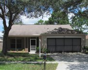 17105 Woodcrest Way, Clermont image