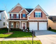 2233  Sonoma Valley Drive Unit #273, Charlotte image
