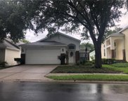 5136 Sterling Manor Drive, Tampa image