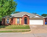 1119 Fawn Meadow Trail, Kennedale image