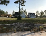 8743 Maple Ash Trail, Leland image