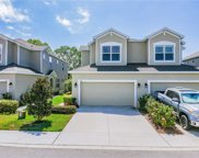 458 Harbor Springs Dr, Palm Harbor image