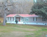 946 Cook Springs Rd, Pell City image