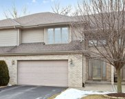 16720 Trail View Court, Tinley Park image