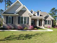 116 Low Country Loop, Murrells Inlet image
